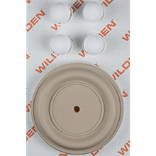 "Wilden Wet Repair Kit, 2"" Bolted Metal, PTFE"