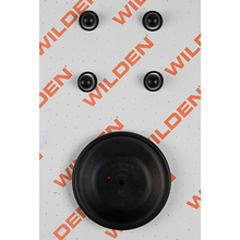 "Wilden Wet Repair Kit, 1"" Bolted Metal, FKM"