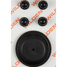 "Wilden Wet Repair Kit, 1.5"" Bolted Plastic, Viton"