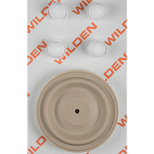 "Wilden Wet Repair Kit, 1.5"" Bolted Plastic, PTFE"