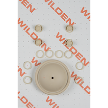 "Wilden Wet Repair Kit, 0.5"" Bolted Plastic, Santoprene"