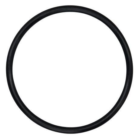 "Wilden O-ring used in 0.5"" Pumps, Buna"