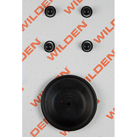 "Wilden Wet Repair Kit, 1"" Bolted Metal, Viton"
