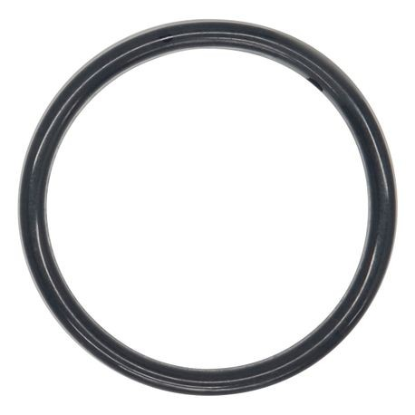 "Wilden O-ring used in 0.5"" Pumps, PTFE, Encapsulated FKM"