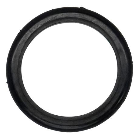 "Wilden Glyd-Ring used in 1.5""-3"" Pumps, PTFE"