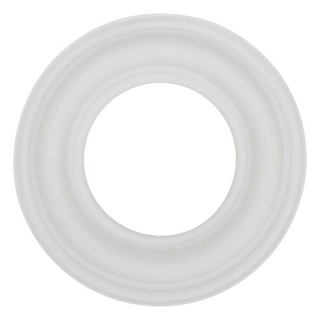 "Wilden Diaphragm used in 3"" Pumps, PTFE"