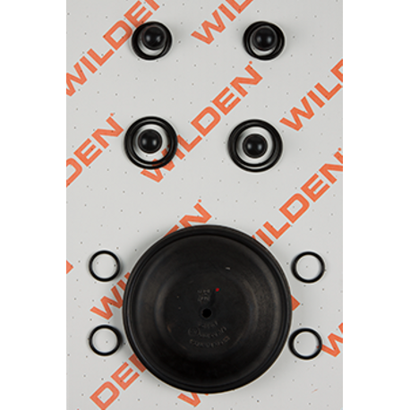 "Wilden Wet Repair Kit, 1"" Clamped Plastic, FKM"